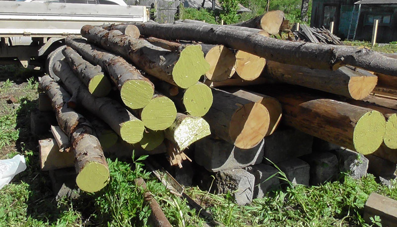 Заготовка древесины своими силами